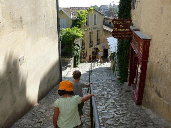 guide des vignobles de saint emilion