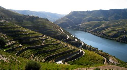 vallee-du-douro