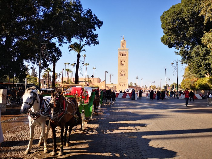 caleche-marrakech-koutoubia