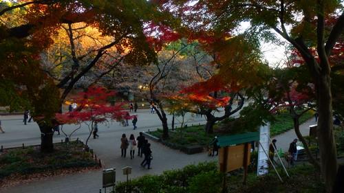 3-semaines-japon-visite