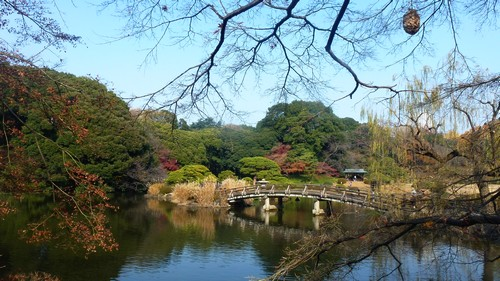 parc-Gyoen-quartier-Shinjuku