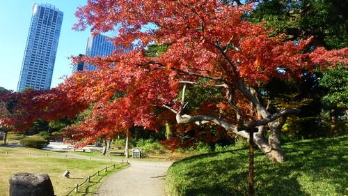 parc-Hamarikyu-tokyo