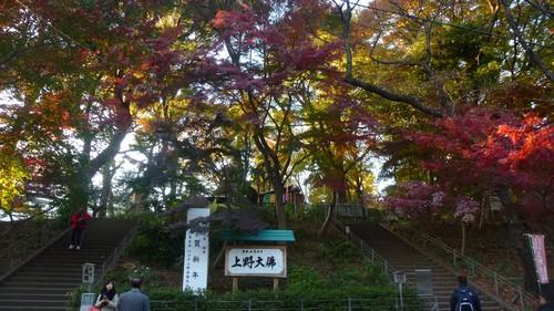 visiter-parc-ueno