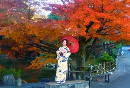 decouvrir-kyoto