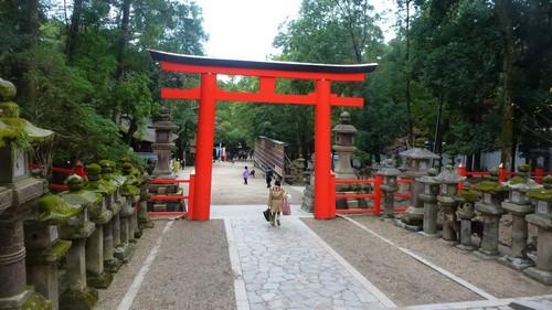 porte-wakamiya-shrineparc-nara