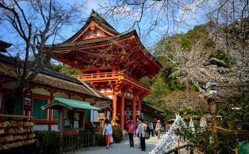 visiter-Kamigamo-jinja