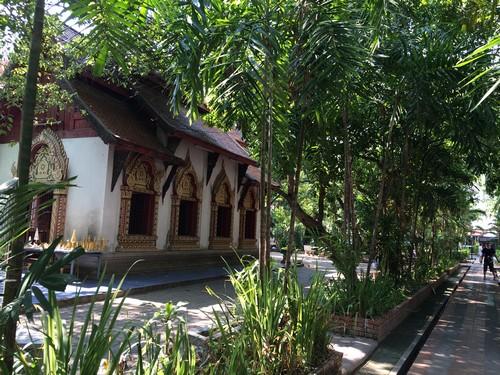viree-malin-chiang-mai-thailande