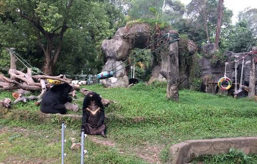 zoo-ho-chi-minh