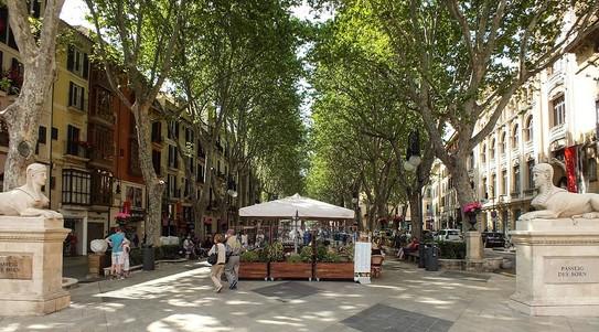 Paseo-de-Born-Palma-Majorque