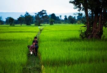 visiter-cambodge