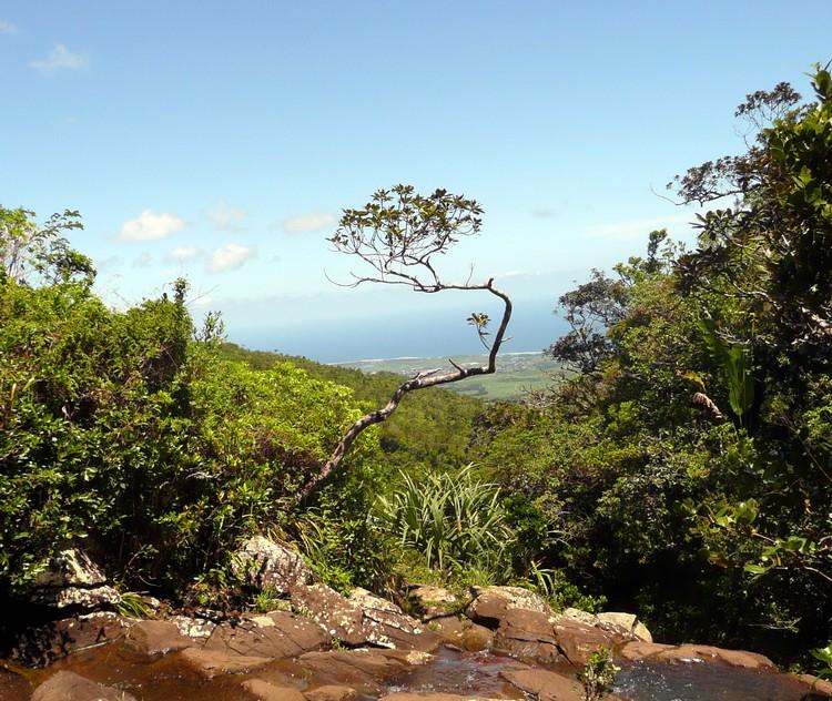 visiter-parc-naturel-gorges-riviere-noire-ile-Maurice