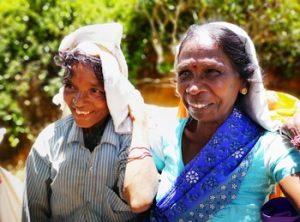 Visiter le Sri Lanka en 10 ou 15 jours