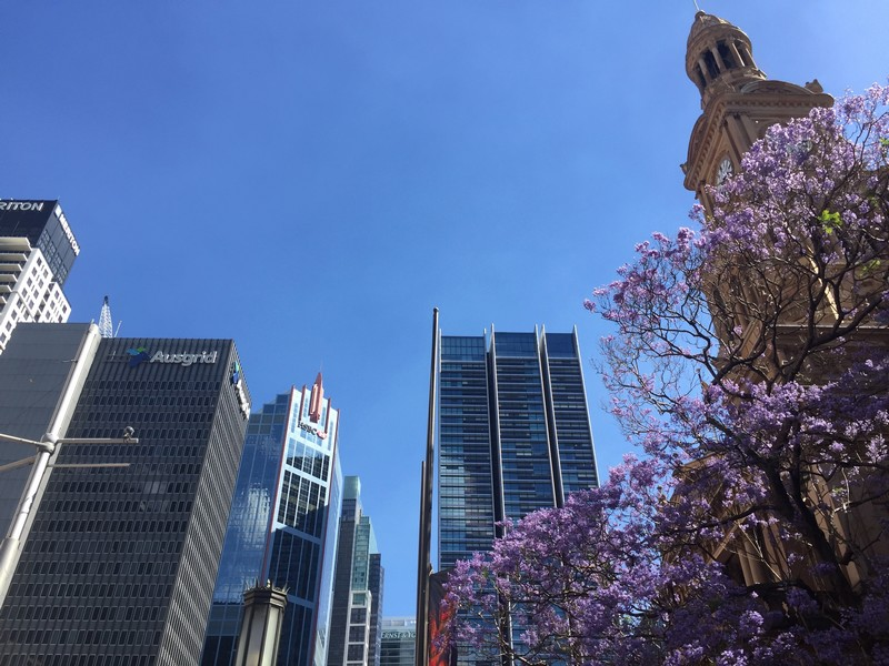que-voir-central-business-district-sydney