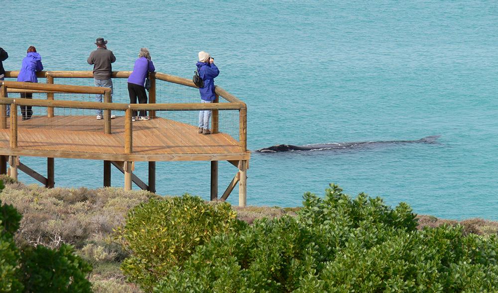 logans-beach-wales-australie