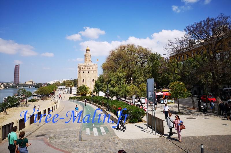 torre-del-oro-arret-bus-toustique-seville