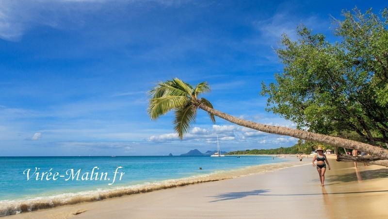 Que-faire-en-Martinique