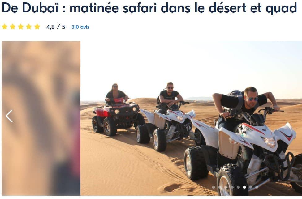 activite-dubai-desert