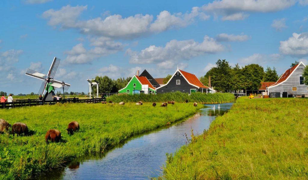 activite-region-amsterdam-polders