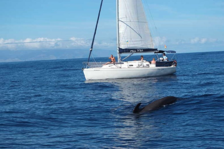 ecocroisiere-yacht-de-luxe