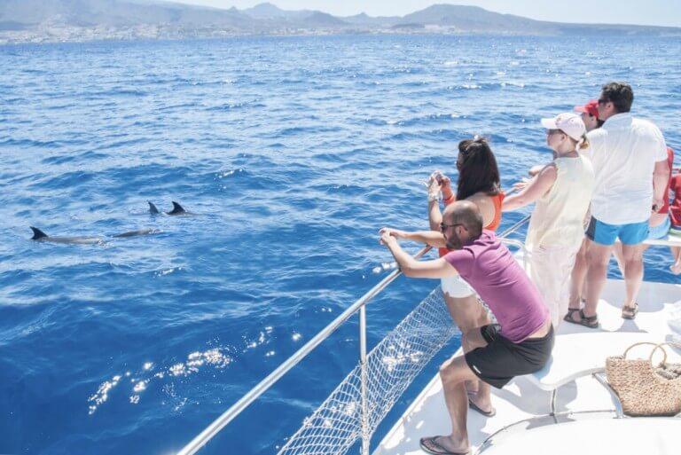excursion-bateau-tenerife