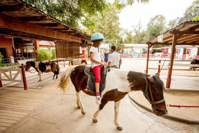 zoo-barcelone-balade-poney